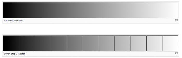modo en escala de grises