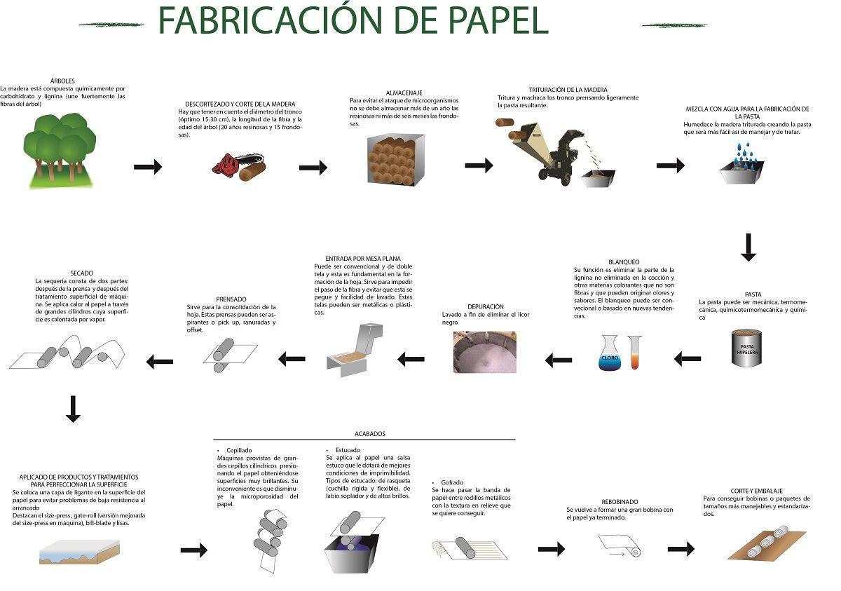 infografia-fabricacion-del-papel