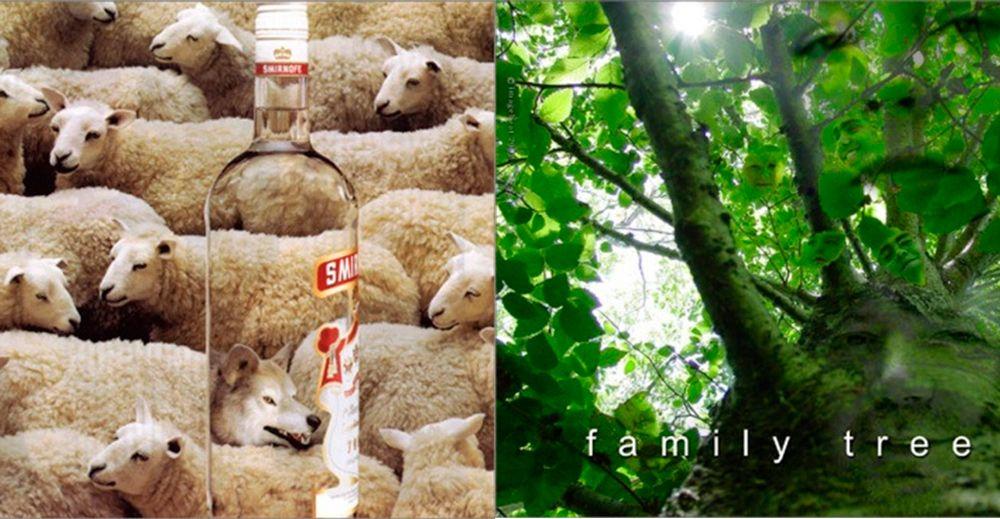 ejemplo de similitud y simplicidad