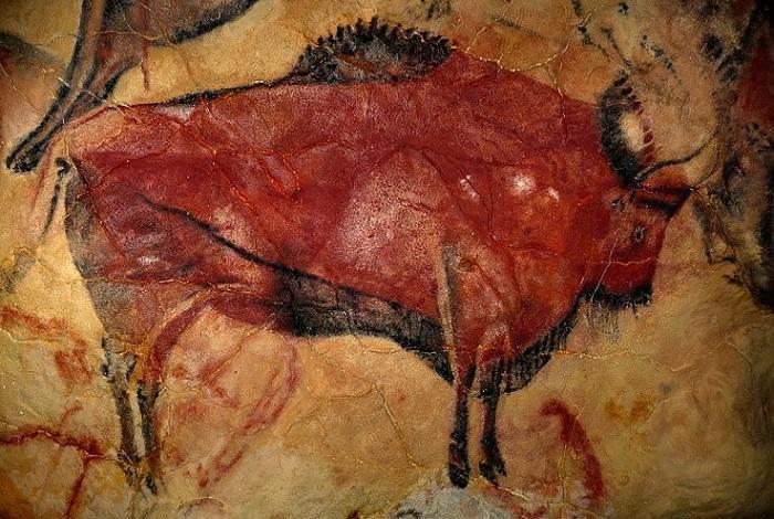 bisón, altamira, pintura